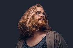 Close-up portrait of a redhead hipster male with long luxuriant hair and full beard dressed in casual clothes standing stock photography