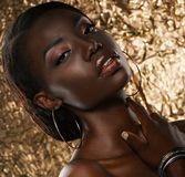 Portrait of sensual young african woman against golden background Stock Photography