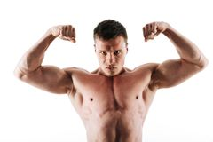 Close-up portrait serious bodybuilder showing his biceps, lookin Royalty Free Stock Photos