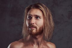 Portrait of shirtless redhead handsome man, isolated on dark background. stock image