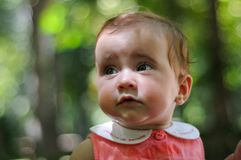 Six months old baby girl having fun outdoors. royalty free stock image
