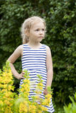 Close up portrait of a six year little girl, against background royalty free stock images