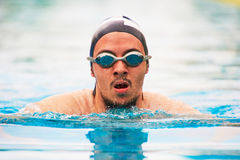 Close-up portrait of swimmer man. Swimming in pool Stock Photos