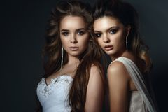 Two beautiful models with perfect take up and hairstyle wearing wedding dresses and luxurious earrings royalty free stock image