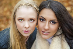 Close up portrait of two beautiful young women on the background Stock Photo