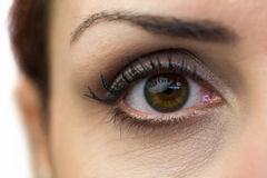 Close-up portrait of woman eye Stock Image