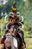 Close up Portrait of Yali Mabel, the chief of Dani tribe. Royalty Free Stock Images