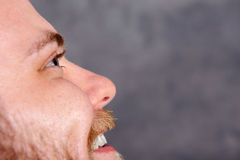 Close up - portrait of a young, bearded man Stock Photography