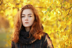 Close up portrait young beautiful redhead woman in scarf and plaid jacket against autumn foliage background cold season outdoors Royalty Free Stock Image