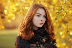 Close up portrait young beautiful redhead woman in scarf and plaid jacket against autumn foliage background cold season outdoors. Close up portrait young lovely Royalty Free Stock Image