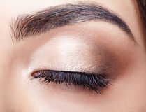 Female eye zone makeup. Close-up portrait of young beautiful woman`s closed, female eye zone make up Royalty Free Stock Images