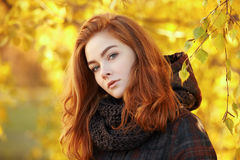Close up portrait young lovely redhead woman in scarf and plaid jacket against autumn foliage background cold season outdoors Royalty Free Stock Photography