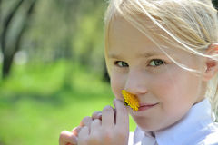 Close-up portraite little girl with dandelion. Close-up portraite little blonde girl smelling dandelion and looking on camera Stock Images