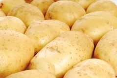 Close up potato Stock Photo