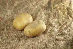 Close up of Potatoes Royalty Free Stock Photo