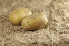 Close up of Potatoes Royalty Free Stock Image