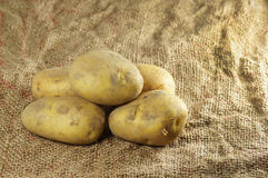 Close up of Potatoes Royalty Free Stock Images