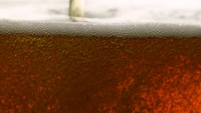Close up pouring dark beer with bubbles in glass. Close up background of pouring sparkling cola soda water with bubbles or dark lager beer in glass, low angle stock video