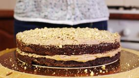 Close-up of pouring nuts on a cream of a chocolate sponge cake. Home baking. Cake on a rotating stand to decorate cakes stock footage