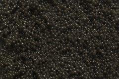Close-up preto do caviar como um fundo Textura do caviar preto imagens de stock royalty free