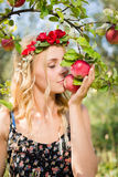 Close up on pretty young apple fairy with three fruits Royalty Free Stock Photo
