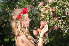 Close up on pretty young apple fairy with three fruits Royalty Free Stock Images