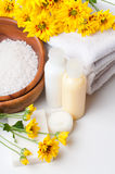 Close-up of products for spa and body care Royalty Free Stock Image
