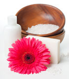 Close-up of products for spa and body care Royalty Free Stock Photo