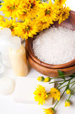 Close-up of products for spa and body care. Close-up of products for spa, body care and hygiene on a white background Stock Images