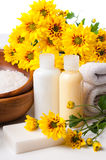 Close-up of products for spa and body care. Close-up of products for spa, body care and hygiene on a white background Royalty Free Stock Image