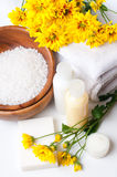 Close-up of products for spa and body care Royalty Free Stock Images