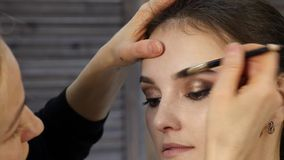 Professional make-up artist paints eyebrows to beautiful client. fashion industry cosmetics. Close-up of professional make-up artist dyes the eyes of the model stock footage