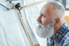Serious old man is working in office Stock Image