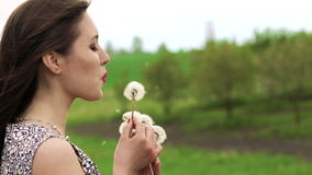Close up profile of girl blowing dandelion in the garden. Slowly.  stock video