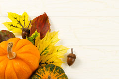 Close Up Of Pumpkin, Autumn Leaves And Acorns Stock Photography
