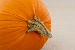 Close up of pumpkin filling 2/3 of the frame Stock Photography
