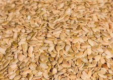 Close up of the pumpkin seeds background Royalty Free Stock Photo