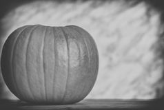 Close up on pumpkin on wood and dark background, black and white Stock Image