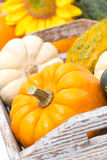 Close-up of a pumpkin in a wooden tray and yellow flowers Stock Photo