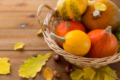 Close up of pumpkins in basket on wooden table Royalty Free Stock Photos