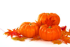 Close up of pumpkins and leaves on the table. Royalty Free Stock Images