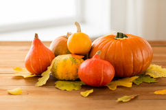 Close up of pumpkins on wooden table at home Royalty Free Stock Photography