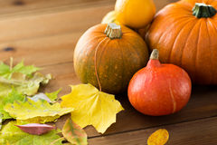 Close up of pumpkins on wooden table at home Stock Images