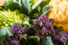 Close up on purple broccoli Stock Photos