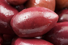 Close-up of a purple olive Royalty Free Stock Photography