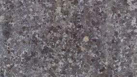 Close up of purple stone wall stock images