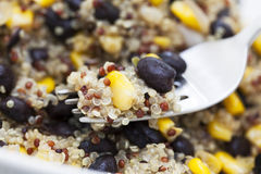 Close Up Quinoa Dinner Royalty Free Stock Photos