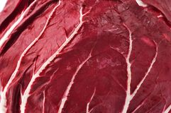 Close up of a radicchio Royalty Free Stock Photo