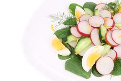 Close up of radish salad with eggs. Royalty Free Stock Images