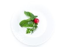 Close up of radish salad on plate. Isolated on white. Concept of healthy lifestyle and dieting Royalty Free Stock Photos